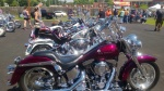 custome harley davidson