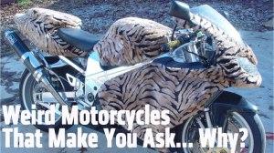 custom motorcycle, harley, harley davidson, motorcycle