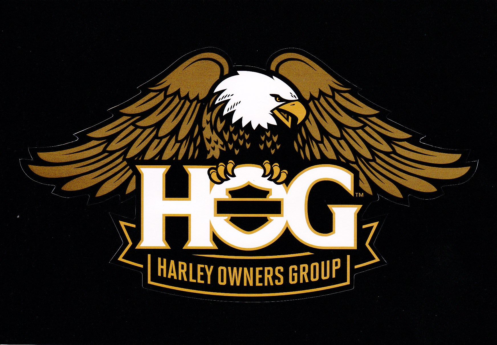 Harley Davidson Black Rider Patch