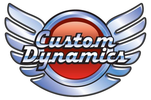 custom dynamics